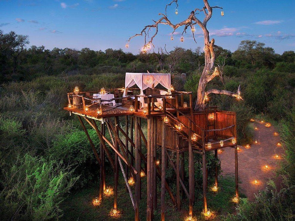 safaris en sudafrica